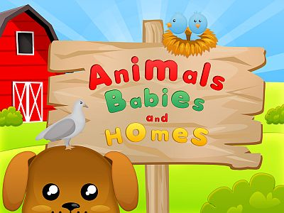 Animals Babies and Homes